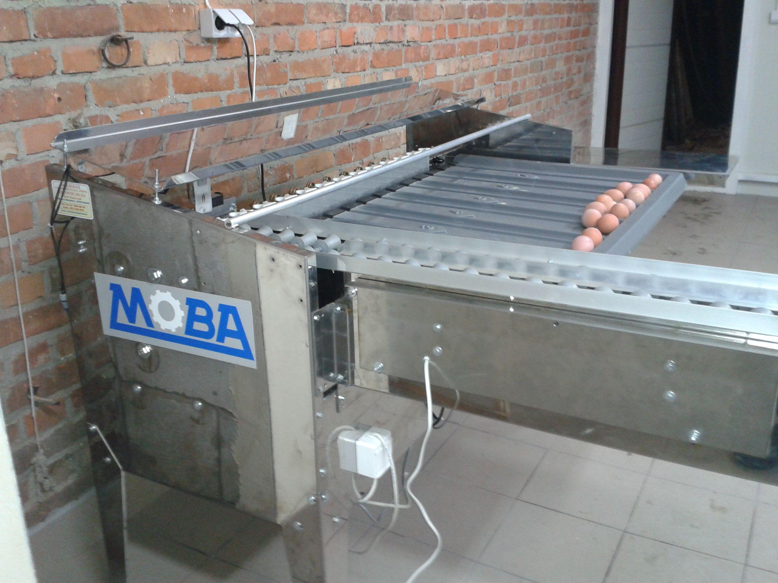 moba 88 wydajność 4500 jaj/h